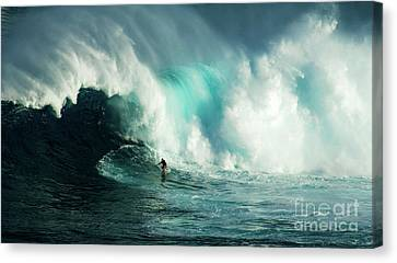 Extreme Ways Of Living 2 Canvas Print by Bob Christopher
