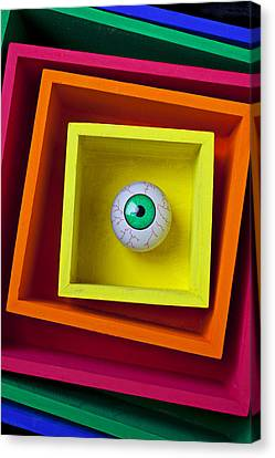 Seeing Canvas Print - Eye In The Box by Garry Gay
