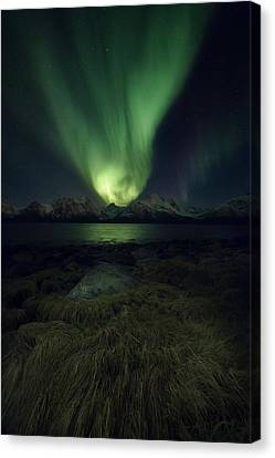 Eye In The Night Canvas Print by Tor-Ivar Naess