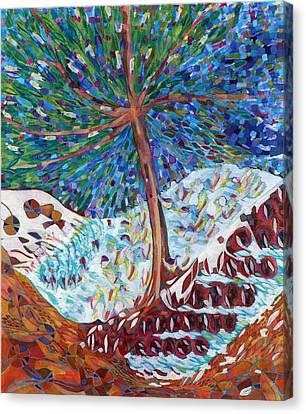 Himalaya Code - Eye Canvas Print by Linda Cull