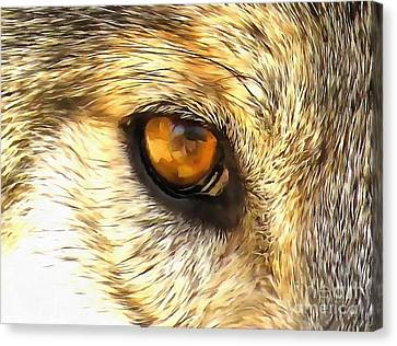 Eye Of A Wolf. Canvas Print