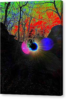 Eye Of Nature Canvas Print