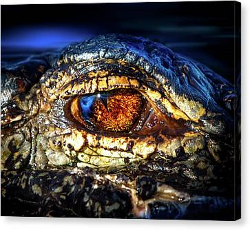 Eye Of The Apex Canvas Print