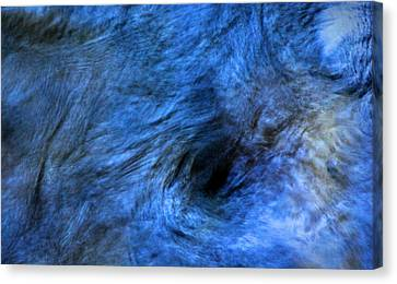 Eye Of The Hurricane Canvas Print by Peter Cutler
