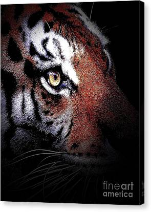 Eye Of The Tiger 2 Canvas Print by Animals Art