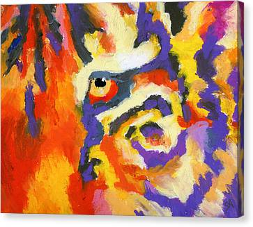 Eye Of The Tiger Canvas Print by Stephen Anderson