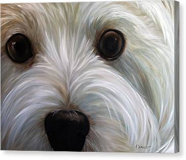 West Highland Canvas Print - Eye See You Too by Mary Sparrow