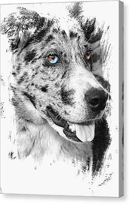 Eyes Canvas Print by Joyce Baldassarre