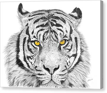 Eyes Of The Tiger Canvas Print by Shawn Stallings