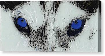 Eyes Of The Wild Canvas Print