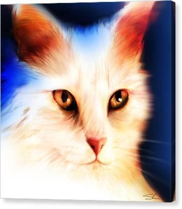 Eyes Canvas Print by Shevon Johnson