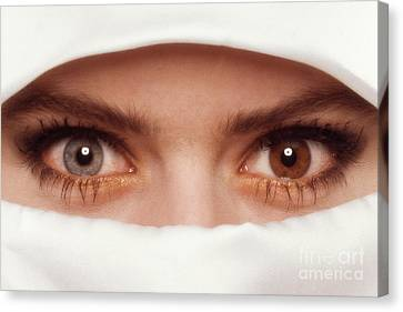 Eyes Two Colors Canvas Print by Kim Lessel