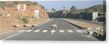 Fab 4 On Zebra Crossing Canvas Print