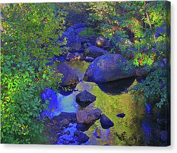 Canvas Print featuring the photograph Face In The Creek by Tammy Sutherland