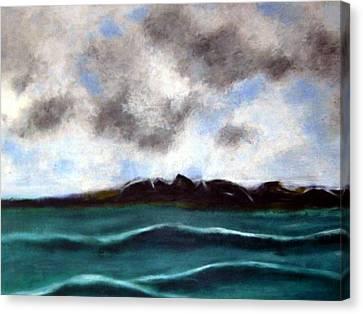 Face To The Sky Canvas Print by Joseph Ferguson