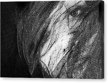 Faces No. 2 Canvas Print