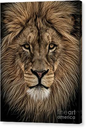 Facing Courage Canvas Print
