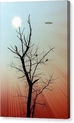 Fade To Red Canvas Print by Brian Wallace
