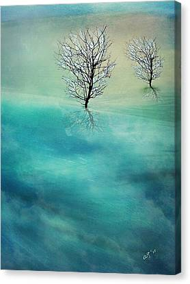 Fading Hills Canvas Print