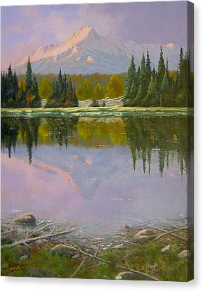Fading Light - Peaceful Moment Canvas Print by Kenneth Shanika