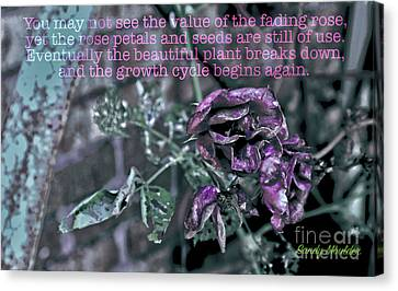 Canvas Print featuring the photograph Fading Rose by Sandy Moulder