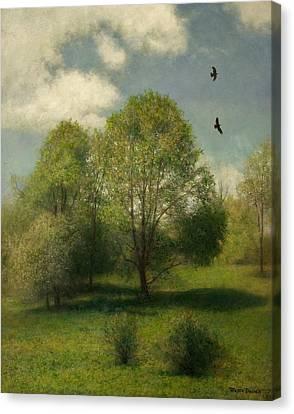 Fairchild Hill Canvas Print by Wayne Daniels