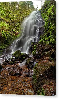 Fairy Falls In Columbia Gorge Canvas Print by David Gn