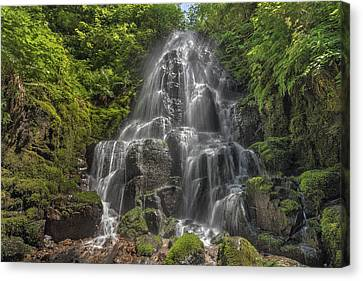 Fairy Falls On A Sunny Day Canvas Print by David Gn