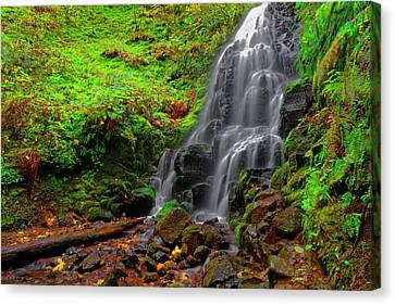 Fairy Falls Oregon Canvas Print by Jonathan Davison