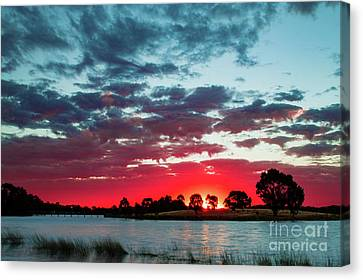 Fairy Floss Skies  Canvas Print by Naomi Burgess