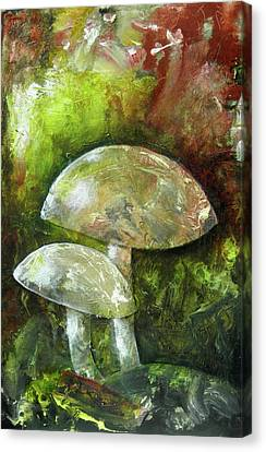 Fairy Kingdom Toadstool Canvas Print
