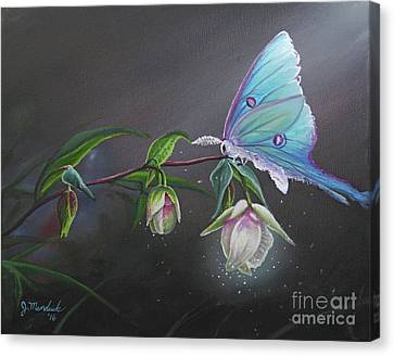Fairy Lantern's Glow Canvas Print by Joe Mandrick