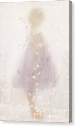 Fairy Lights Canvas Print by Stephanie Frey