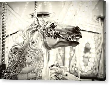 Canvas Print featuring the photograph Fairy Steed by Caitlyn  Grasso
