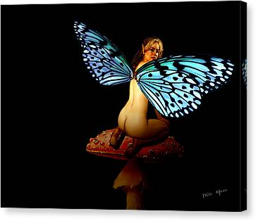 Fairy Takes A Second Look Canvas Print by Tray Mead