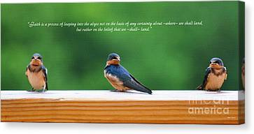 Barn Swallow Canvas Print - Faith Is by Diane E Berry
