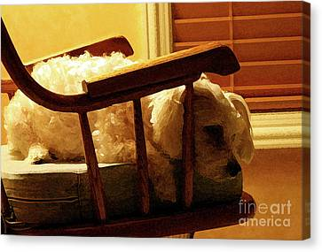 Sleeping Maltese Canvas Print - Faithful by Karen Adams