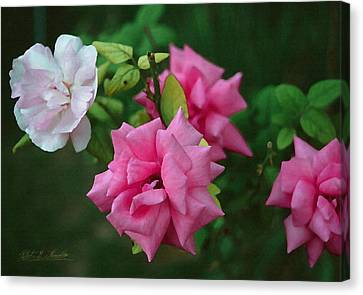 Canvas Print featuring the photograph Fake Painting Of Roses by Robert Kernodle