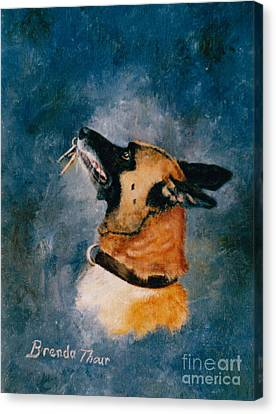 Falco Canvas Print by Brenda Thour