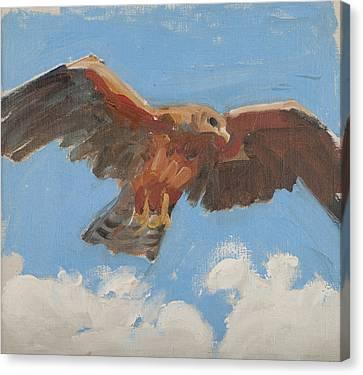 Falcon Canvas Print by Akseli Gallen-Kallela