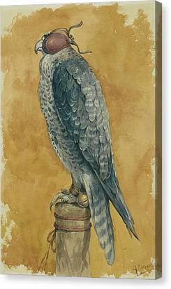 Hunting Bird Canvas Print - Falcon by Alexander Sergeevich Khrenov