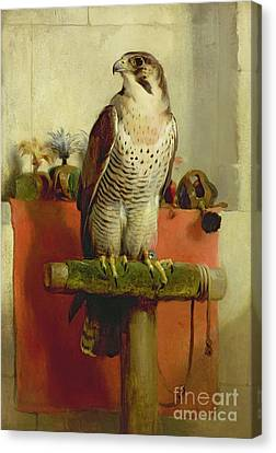 Falcon Canvas Print by Sir Edwin Landseer