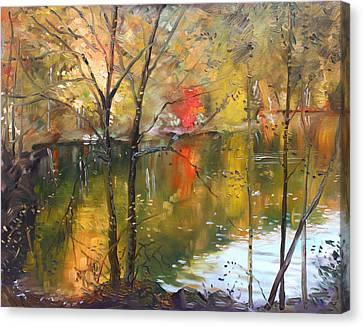 Fall 2009 Canvas Print by Ylli Haruni