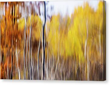 Canvas Print featuring the photograph Fall Abstract by Mircea Costina Photography