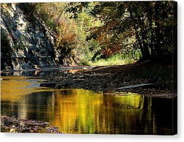 Fall At Big Creek Canvas Print by Bruce Patrick Smith