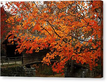 Fall At Humpback Bridge Canvas Print by Cathy Shiflett