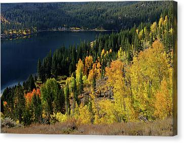 Fall At Rock Creek Lake Eastern Sierra Canvas Print