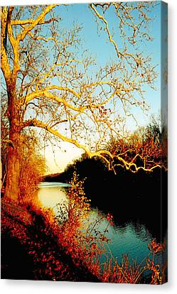 Fall At The Raritan River In New Jersey Canvas Print by Christine Till