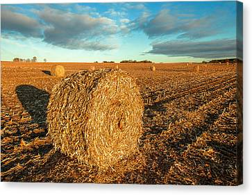 Fall Bale Canvas Print