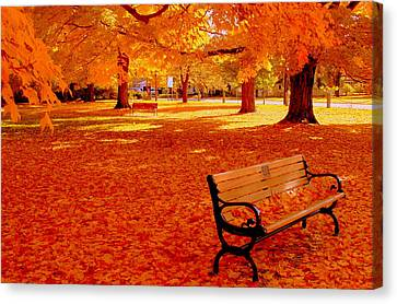 Fall Bench  Newburyport Ma Canvas Print by Suzanne DeGeorge